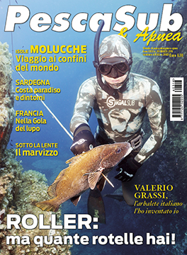 03_cover