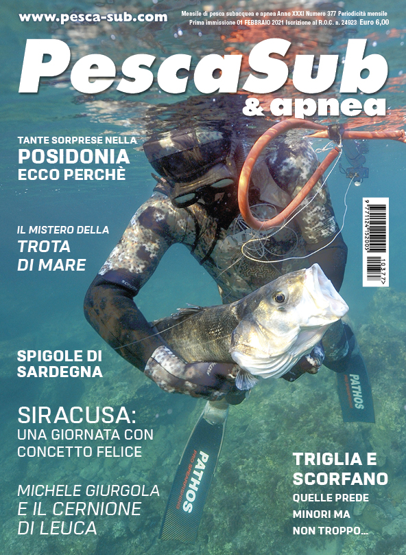 02_cover