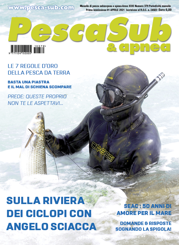 04_cover