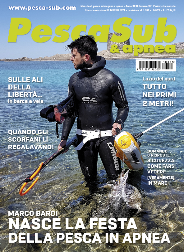 06_cover