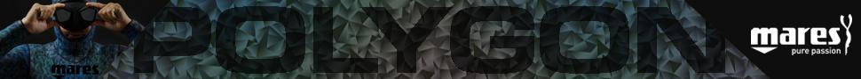 BannerPolygon_970x90_1